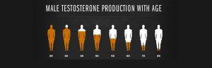 male-testosterone-myth - Copy